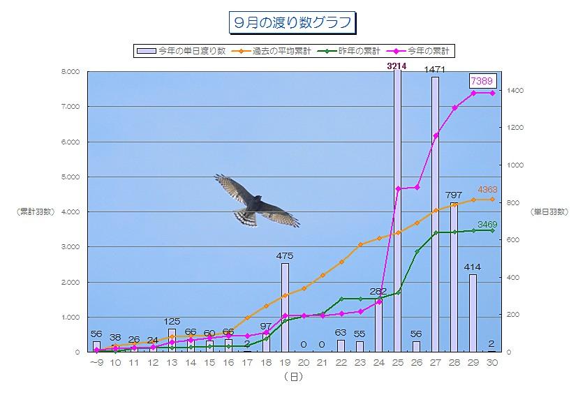 9月の渡り数グラフ