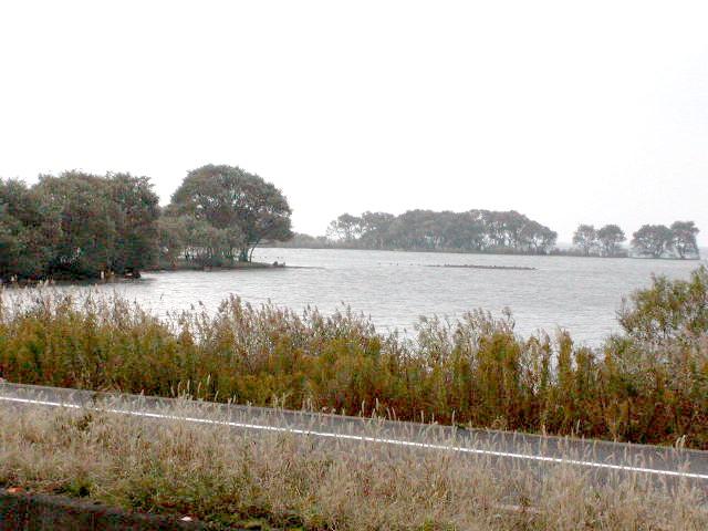 センター前の湖岸