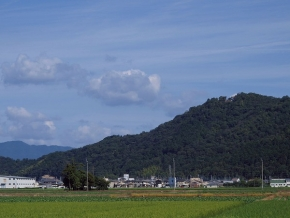 滋賀県の秋のタカの渡りのメッカ